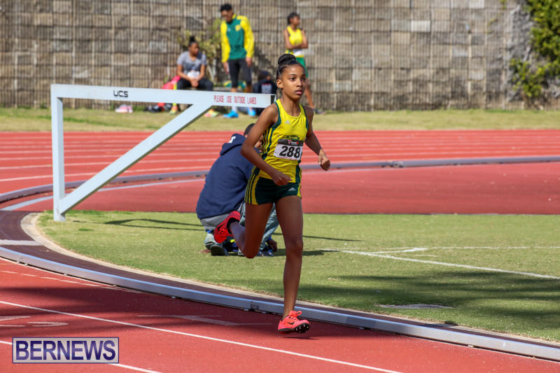 Track-Field-Meet-Bermuda-February-22-2015-145