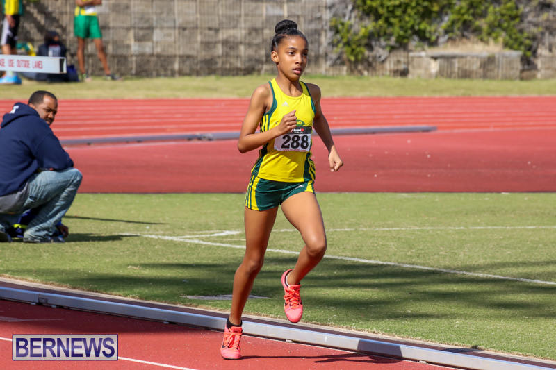 Track-Field-Meet-Bermuda-February-22-2015-146