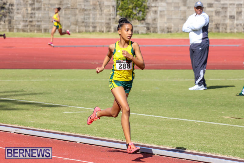 Track-Field-Meet-Bermuda-February-22-2015-148