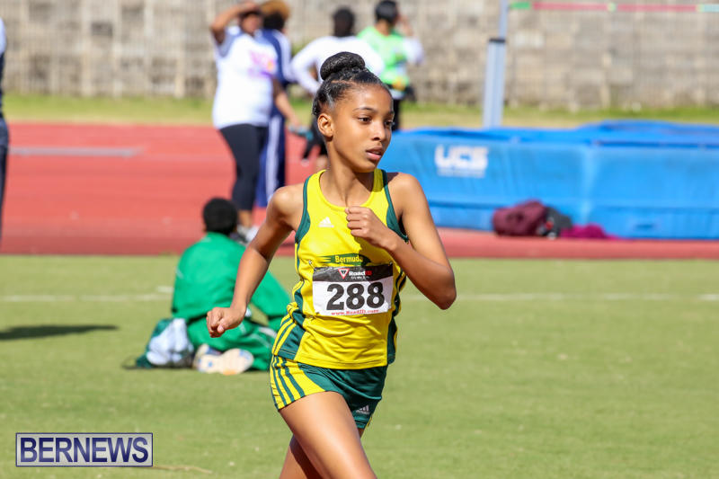 Track-Field-Meet-Bermuda-February-22-2015-149