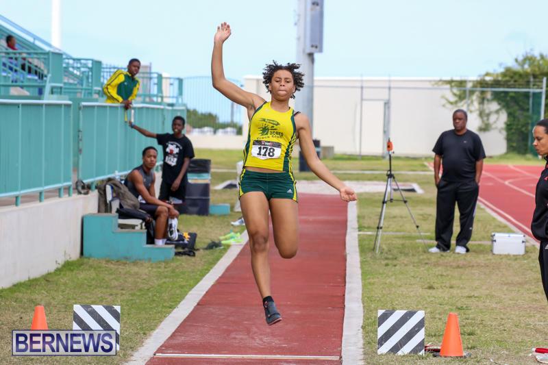 Track-Field-Meet-Bermuda-February-22-2015-15