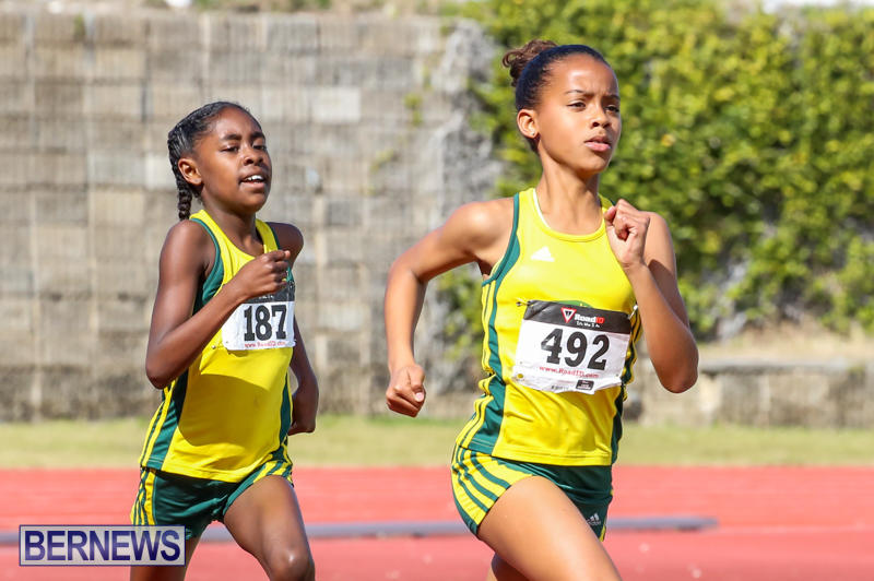 Track-Field-Meet-Bermuda-February-22-2015-152
