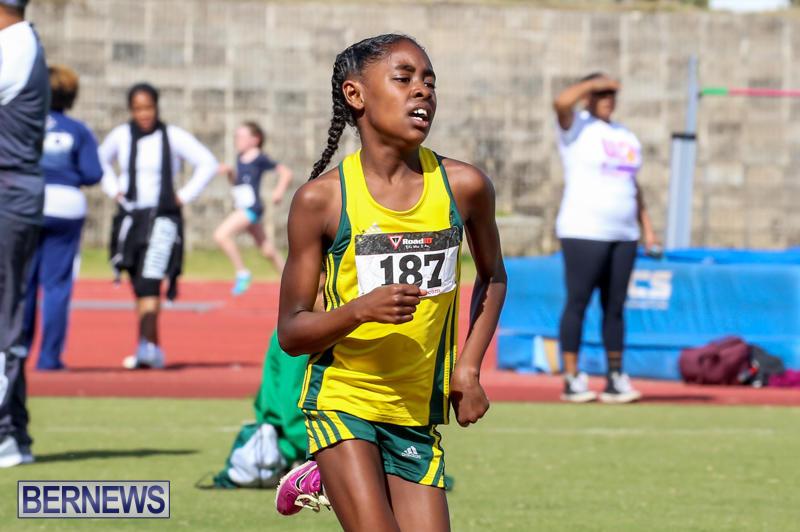 Track-Field-Meet-Bermuda-February-22-2015-155
