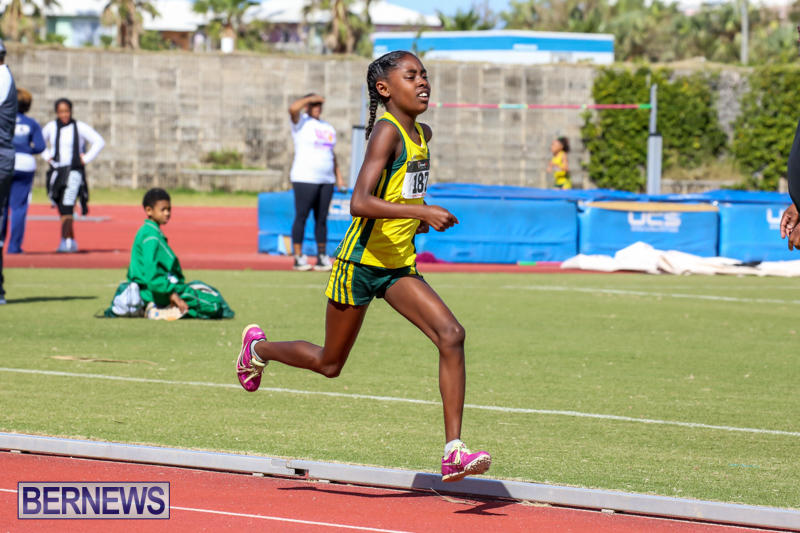 Track-Field-Meet-Bermuda-February-22-2015-156
