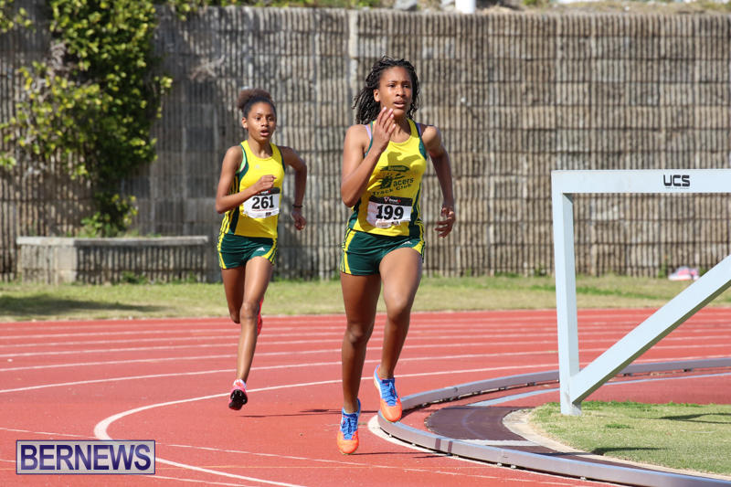 Track-Field-Meet-Bermuda-February-22-2015-157