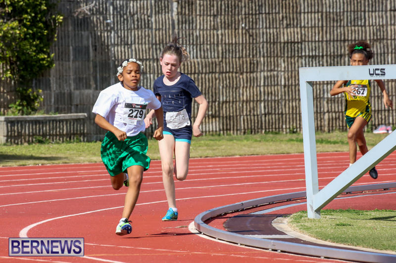 Track-Field-Meet-Bermuda-February-22-2015-162