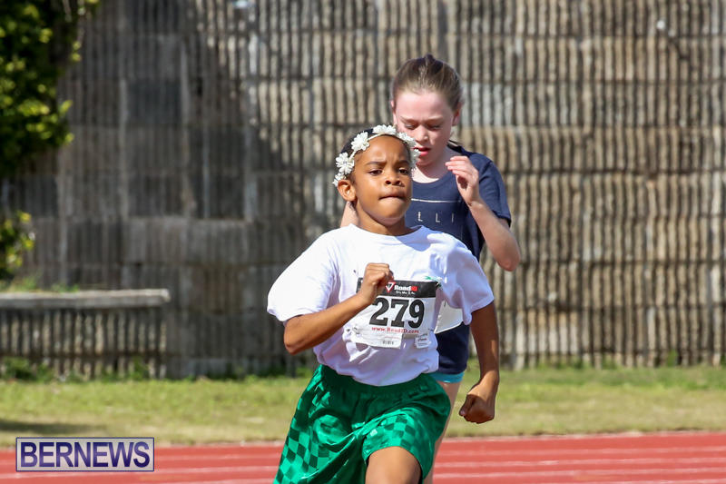 Track-Field-Meet-Bermuda-February-22-2015-163