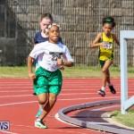 Track & Field Meet Bermuda, February 22 2015-164