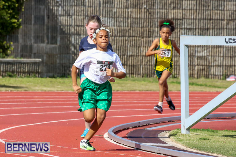 Track-Field-Meet-Bermuda-February-22-2015-164