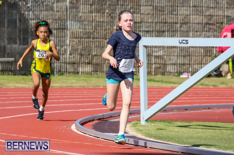 Track-Field-Meet-Bermuda-February-22-2015-165