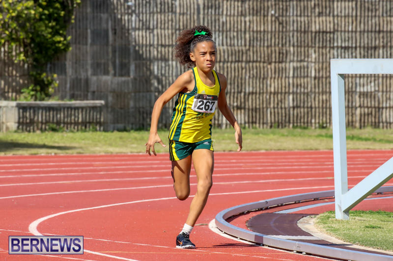 Track-Field-Meet-Bermuda-February-22-2015-167