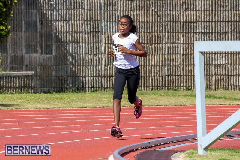 Track-Field-Meet-Bermuda-February-22-2015-168