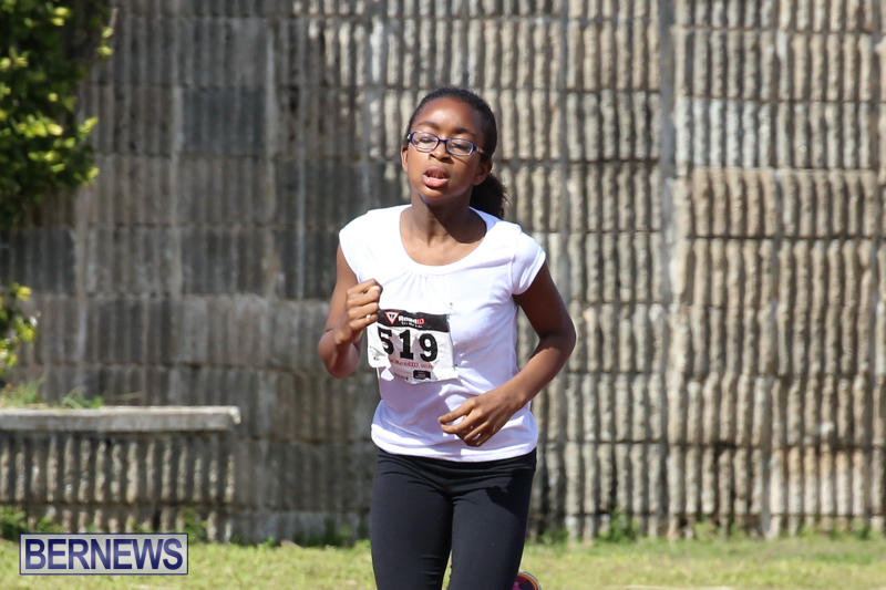 Track-Field-Meet-Bermuda-February-22-2015-169