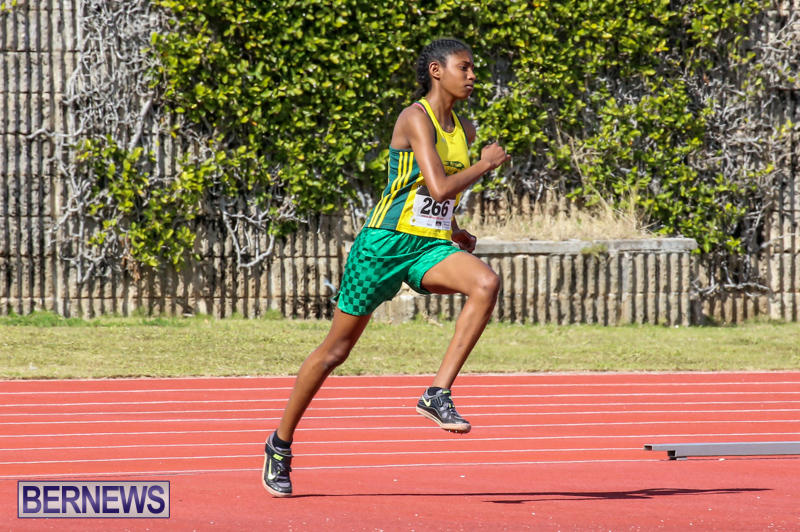 Track-Field-Meet-Bermuda-February-22-2015-170