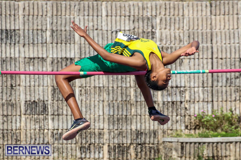 Track-Field-Meet-Bermuda-February-22-2015-171