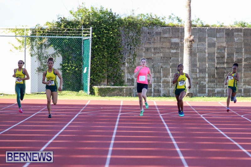 Track-Field-Meet-Bermuda-February-22-2015-186