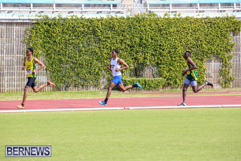 Track-Field-Meet-Bermuda-February-22-2015-19