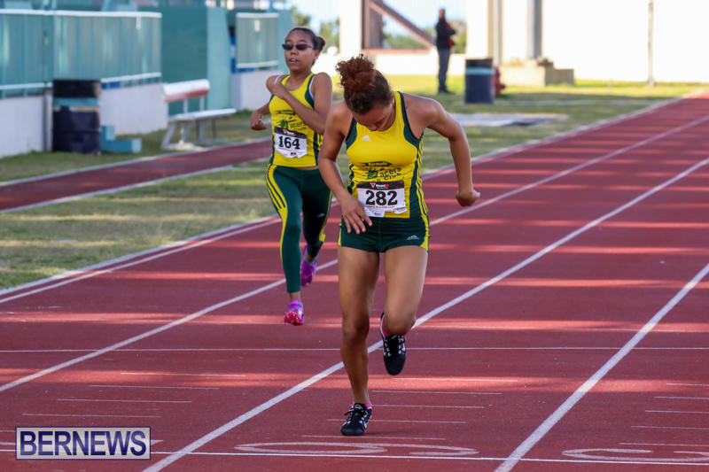 Track-Field-Meet-Bermuda-February-22-2015-194