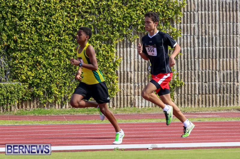 Track-Field-Meet-Bermuda-February-22-2015-20