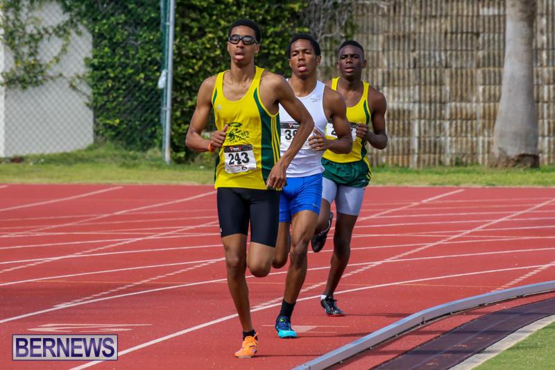 Track-Field-Meet-Bermuda-February-22-2015-23