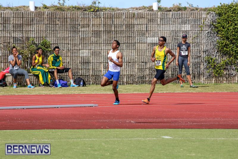 Track-Field-Meet-Bermuda-February-22-2015-29