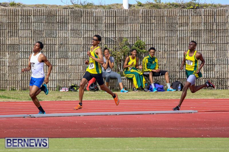Track-Field-Meet-Bermuda-February-22-2015-30