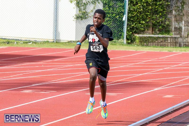 Track-Field-Meet-Bermuda-February-22-2015-43