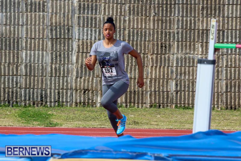 Track-Field-Meet-Bermuda-February-22-2015-47
