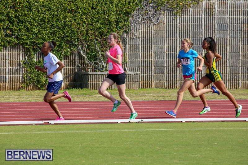 Track-Field-Meet-Bermuda-February-22-2015-51
