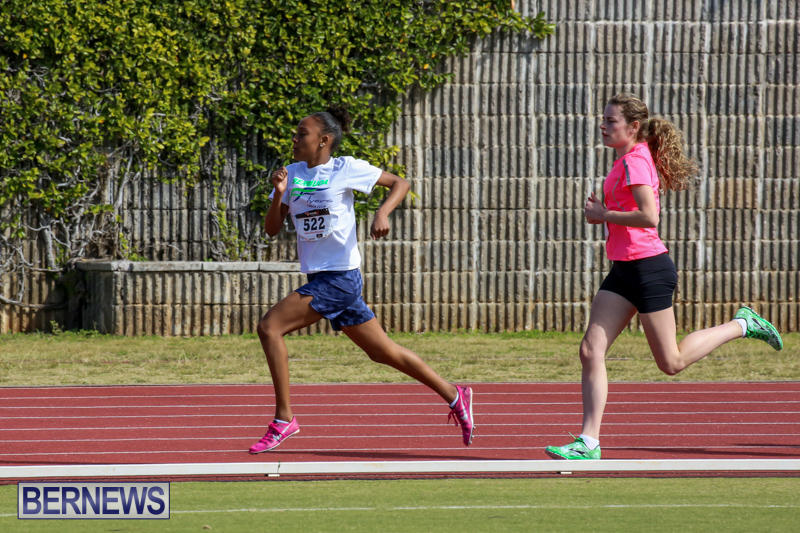 Track-Field-Meet-Bermuda-February-22-2015-52