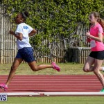 Track & Field Meet Bermuda, February 22 2015-53