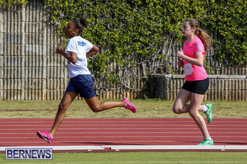 Track-Field-Meet-Bermuda-February-22-2015-53