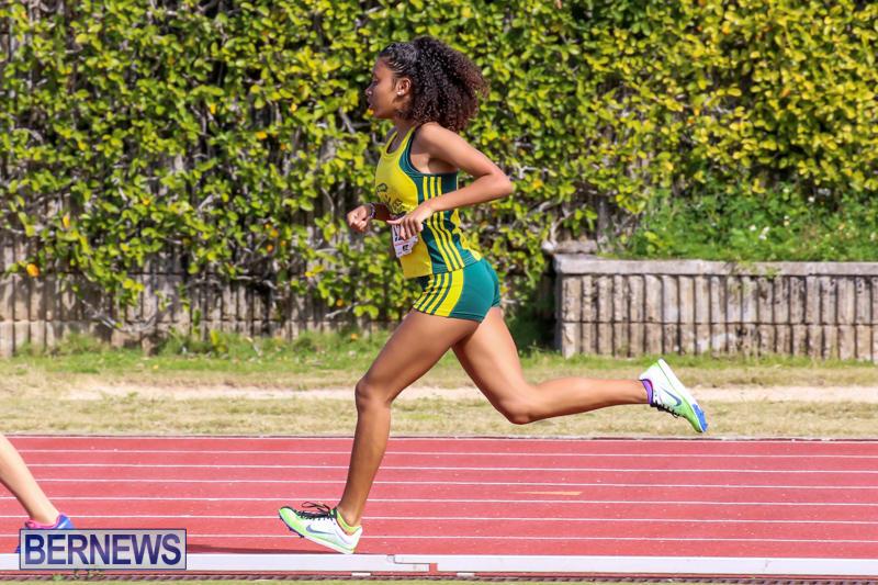 Track-Field-Meet-Bermuda-February-22-2015-57