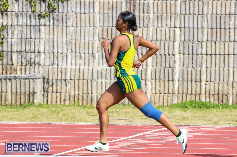 Track-Field-Meet-Bermuda-February-22-2015-58