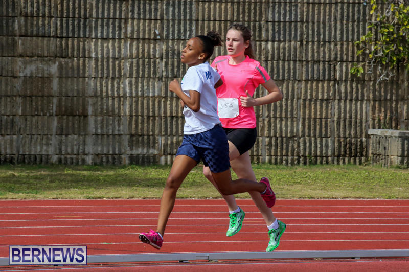 Track-Field-Meet-Bermuda-February-22-2015-59