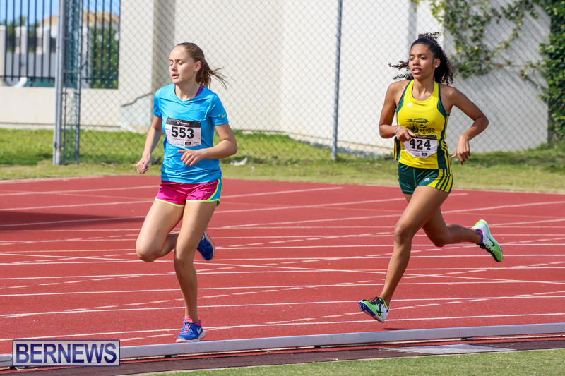 Track-Field-Meet-Bermuda-February-22-2015-63