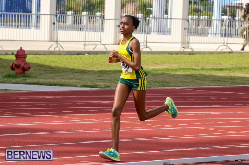 Track-Field-Meet-Bermuda-February-22-2015-66