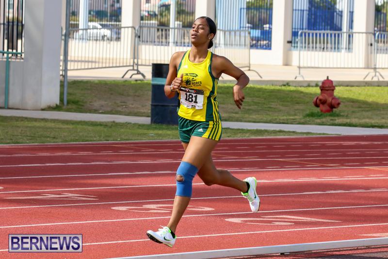 Track-Field-Meet-Bermuda-February-22-2015-68
