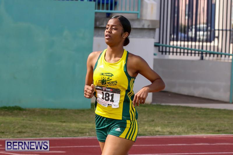 Track-Field-Meet-Bermuda-February-22-2015-69