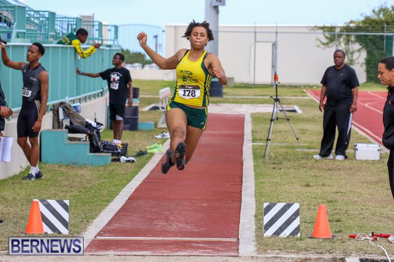 Track-Field-Meet-Bermuda-February-22-2015-7