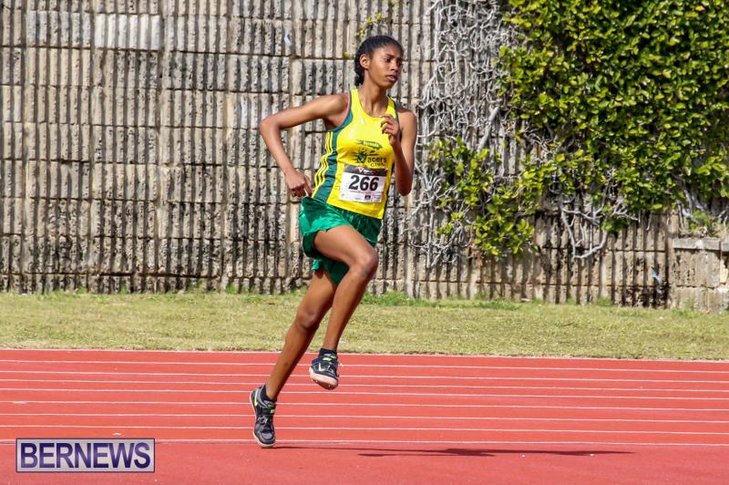 Track-Field-Meet-Bermuda-February-22-2015-70
