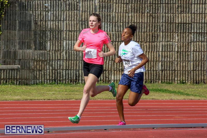 Track-Field-Meet-Bermuda-February-22-2015-73