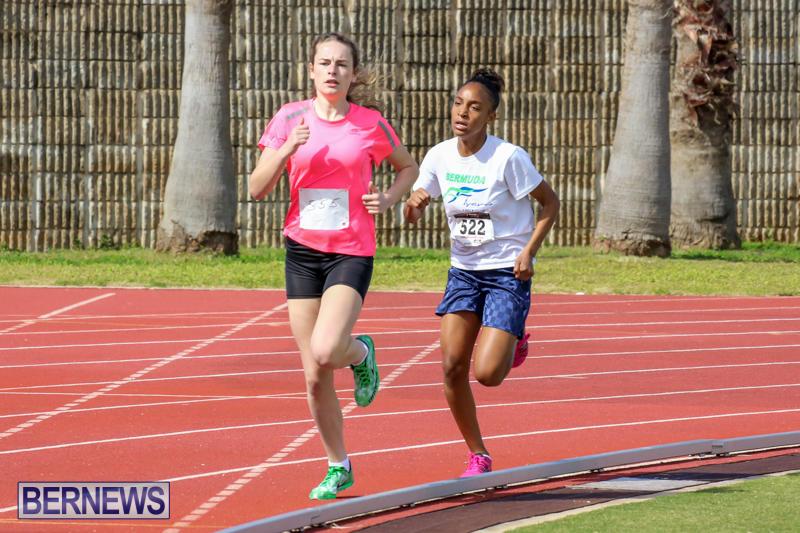 Track-Field-Meet-Bermuda-February-22-2015-75