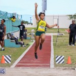Track & Field Meet Bermuda, February 22 2015-8