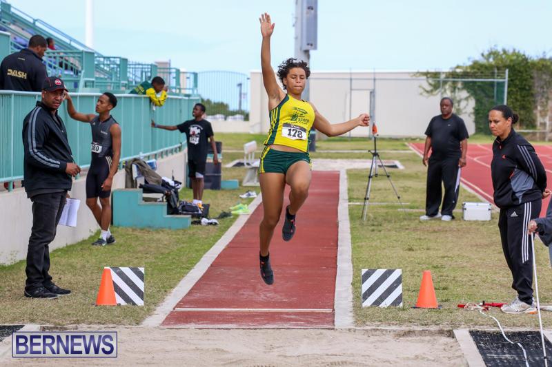 Track-Field-Meet-Bermuda-February-22-2015-8