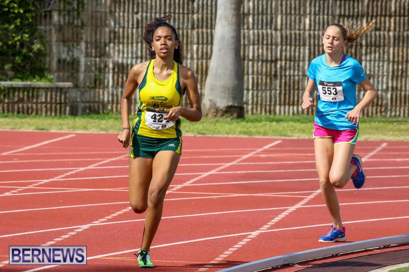 Track-Field-Meet-Bermuda-February-22-2015-81