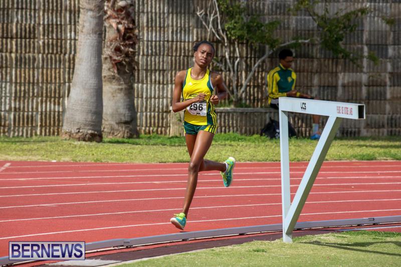 Track-Field-Meet-Bermuda-February-22-2015-87