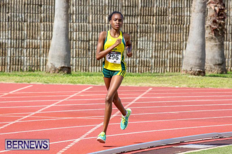 Track-Field-Meet-Bermuda-February-22-2015-88