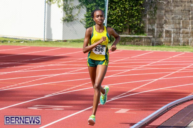 Track-Field-Meet-Bermuda-February-22-2015-90