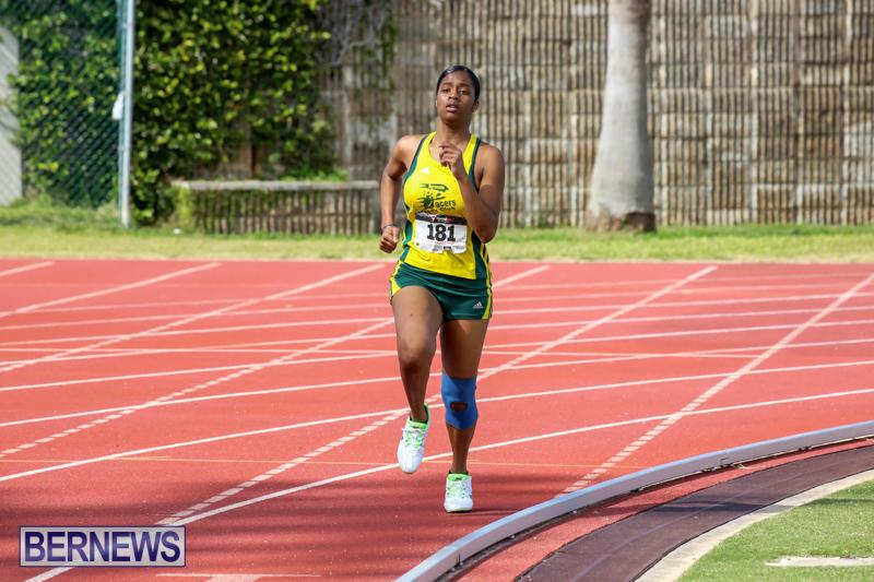 Track-Field-Meet-Bermuda-February-22-2015-91